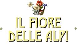 B&B Il Fiore delle Alpi